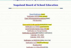 Nagaland 10th result and 12th rEsult 2019 - NBSE HSLC Result and HSSLC Result