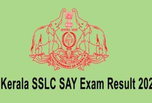 sslc say exam result